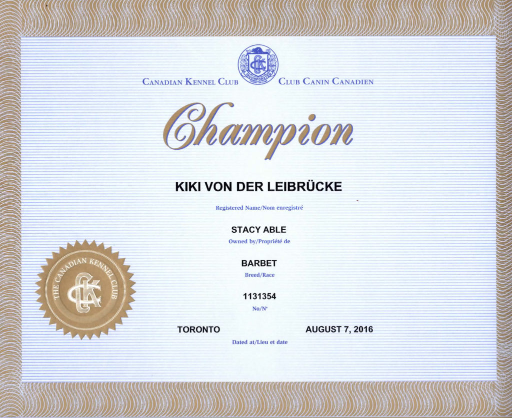 kiki-ckc-champ